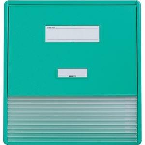 その他 リヒトラブ カラーカードインデックスA3(A4タテ2面)11ポケット グリーン HC113C-3 1冊 ds-2288930