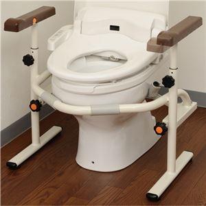 その他 パナソニック エイジフリー洋式トイレ用スライド手すり(ステンレス)PN-L53001 1台 ds-2289140