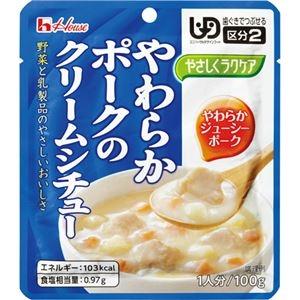 その他 ハウス食品 やさしくラクケアやわらかポークのクリームシチュー 100g 1セット(40パック) ds-2291823