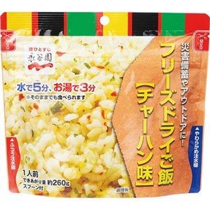 その他 永谷園 業務用フリーズドライごはんチャーハン味 1ケース(15食) ds-2294114