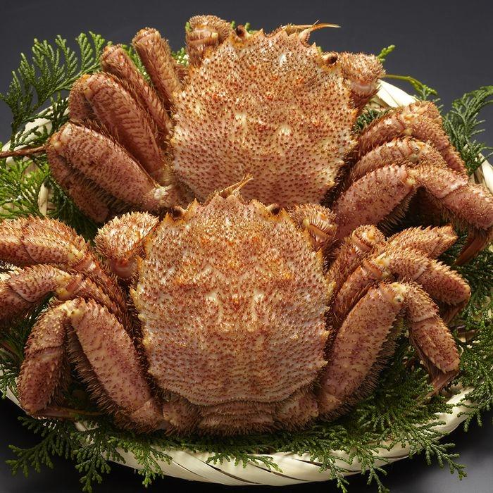 その他 北海道産ボイル毛がに特大2尾 600*2 M-9572【納期目安:1週間】