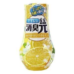 その他 (まとめ)小林製薬 トイレの消臭元爽やかはじけるレモン 400ml 1セット(5個)【×10セット】 ds-2307762
