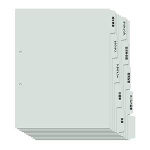 10冊【×3セット】 (まとめ)プラス 利用者カルテ用インデックスA4S その他 2穴 ds-2325491