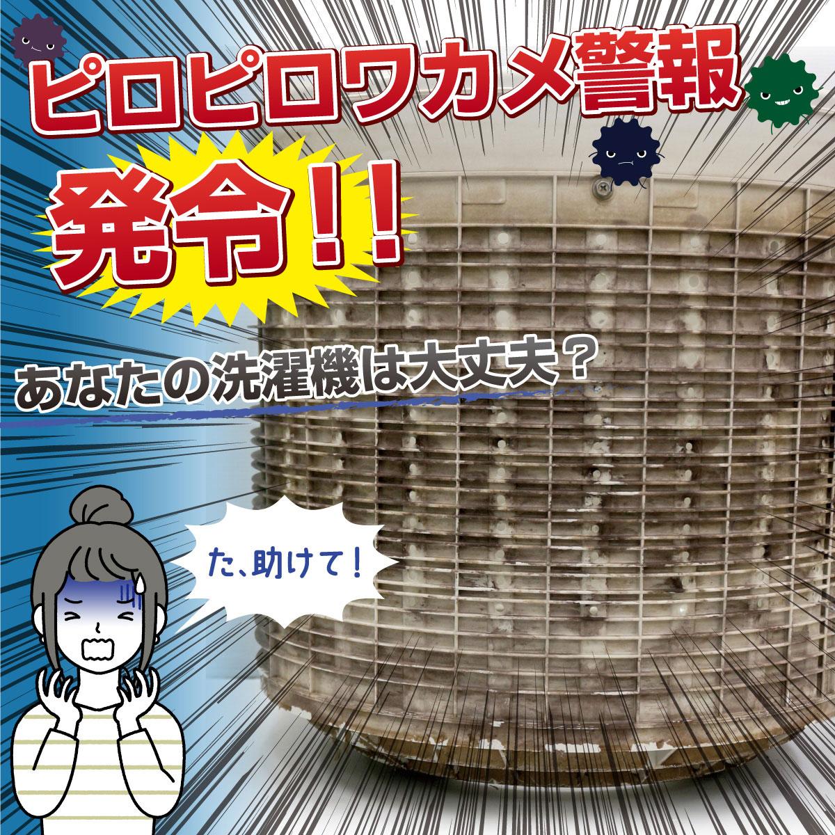パナソニック 洗濯槽クリーナー ドラム式洗濯機用 750ml N-W2 Panasonic純正 塩素系洗浄液