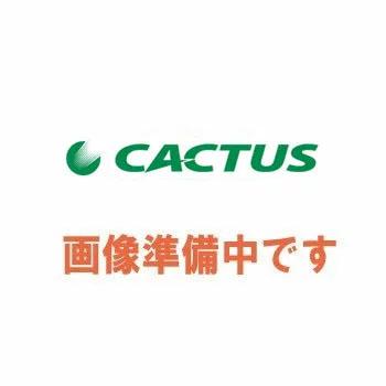 カクタス(CACTUS) レースウェイカッター替刃 DS-1L (鉄用) (EVR-40W/EVR-2D用) (DS1L)
