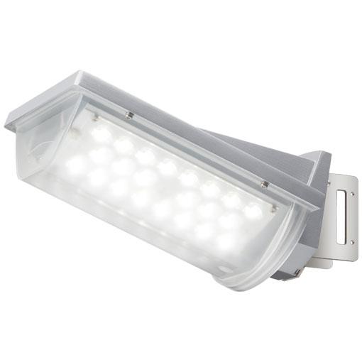 岩崎電気 LED防犯灯 レディオック ストリート E7048SA9 40VA