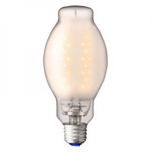 岩崎電気 【ケース販売特価 12個セット】 LED電球 《レディオック LEDライトバルブG》 水銀ランプ40W相当 ランプ電力12W 電球色 E26口金 LDS12L-G/GC_set