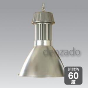 日動工業 LEDメガライト 100W 吊り下げ式 スポットタイプ 防雨型 色温度:6000K LEN-100PE-E-S