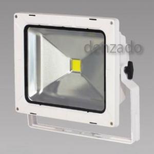 日動工業 LEDエコナイター 防雨型 50W(レフ球300Wの2倍相当) 色温度3000K 本体色:白 LEN-50D-ES-WS
