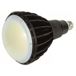 日動工業 【ケース販売特価 6個セット】 LED電球 《エコビック》 水銀灯400W相当 昼白色 全光束13000lm E39口金 本体黒色 L100W-E39-WBK-50K-N_set