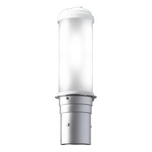 岩崎電気 LEDポールライト 《LEDioc AREA TOLICA-L》 水銀ランプ300~250W相当 防雨形 昼白色 電源ユニット別置形 メタリックシルバー E50073/NSAN9