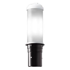 岩崎電気 LEDポールライト 《LEDioc AREA TOLICA-L》 水銀ランプ200W相当 防雨形 昼白色 電源ユニット別置形 ダークブラウン E50071/NSAN9/DB