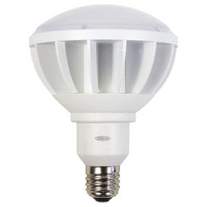 日動工業 高演色LED電球 ハイスペックエコビック50W バラストレス水銀灯500W相当 ワイドタイプ 昼白色 口金E39 白色 L50W-E39-WW-50K-N
