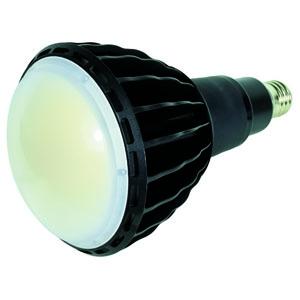 日動工業 高演色LED電球 ハイスペックエコビック100W 水銀灯(レフ球)400W相当 ワイドタイプ 昼白色 口金E39 L100W-E39-WBK-50K-N
