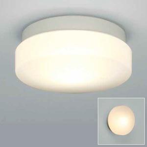 山田照明 LEDランプ交換型エクステリアブラケットライト 天井・壁付兼用 防雨・防湿型 白熱60W相当 昼白色 口金E26 ランプ付 白色塗装 AD-2677-N