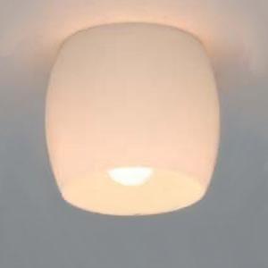 日立 シーリングライト 玄関(内)・廊下用 直付けタイプ 口金E17 LED電球別売 LLC4638E