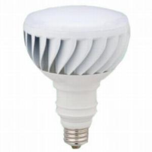 ティーネットジャパン LED電球 バラストレス水銀ランプ300W相当 昼白色 E39口金 PAR40DW