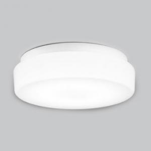 オーデリック LEDバスルームライト FCL30W相当 防雨・防湿型 壁面・天井面・傾斜面取付兼用 昼白色タイプ 白色 OW269011ND
