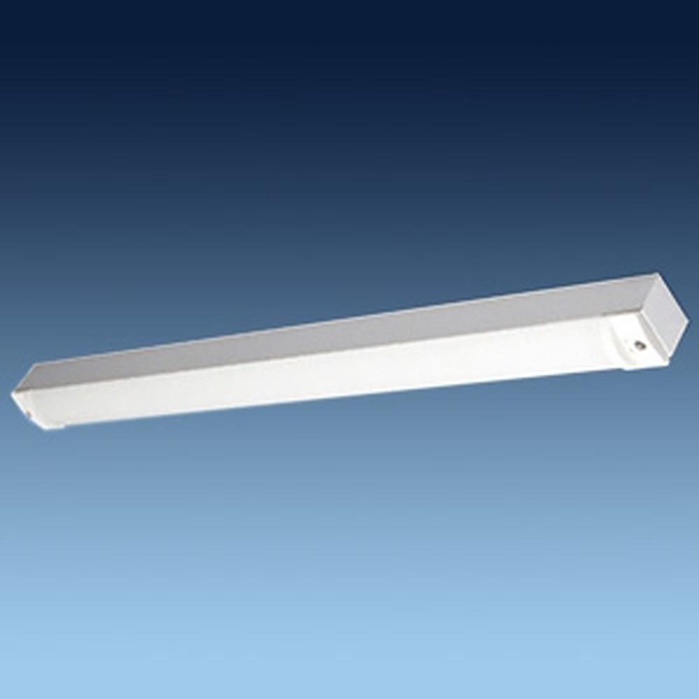 日立 交換形LEDベースライト 《スマートユニット》 40形 直付形 トラフ形 防湿・防雨形 3800lmタイプ FLR40形×2灯器具相当 昼光色 WGP4A1+WGE403DE-N14A1