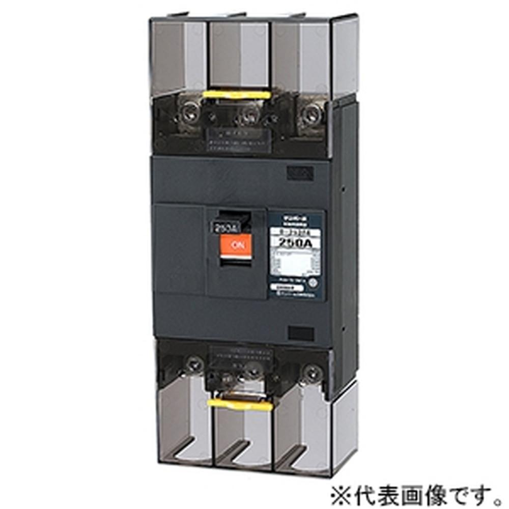 テンパール工業 配線用遮断器 表面形 2P2E250AF 250A 経済タイプ B252EA25