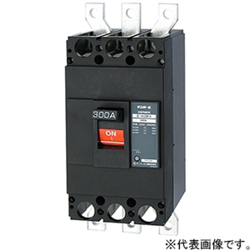テンパール工業 配線用遮断器 表面形 2P2E400AF 300A 経済タイプ B402EA30