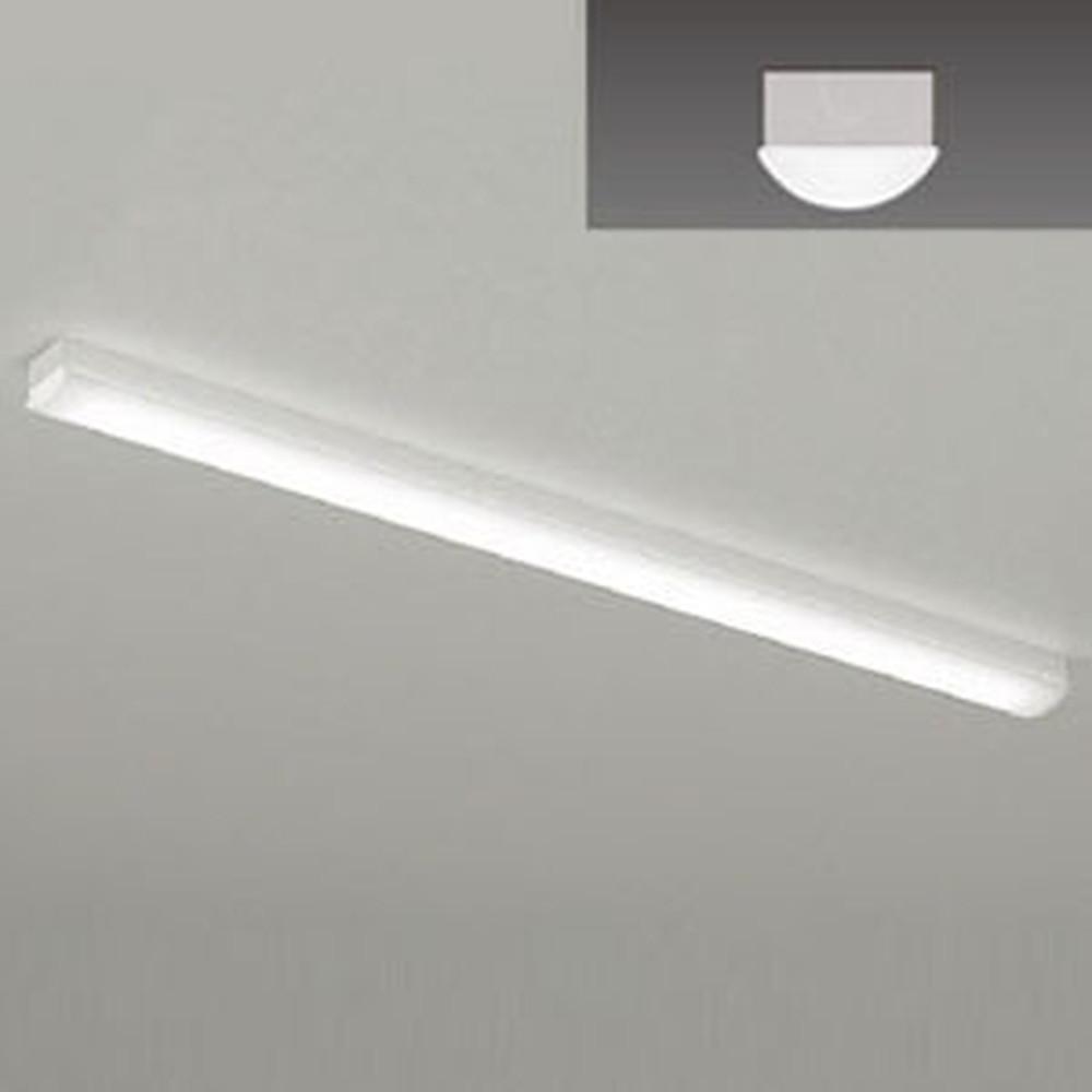 遠藤照明 LEDベースライト 《LEDZ SDシリーズ》 40Wタイプ 直付タイプ トラフ形 一般タイプ 6900lmタイプ 非調光タイプ Hf32W×2灯用高出力型器具相当 昼白色 ERK9636W+RAD-764N