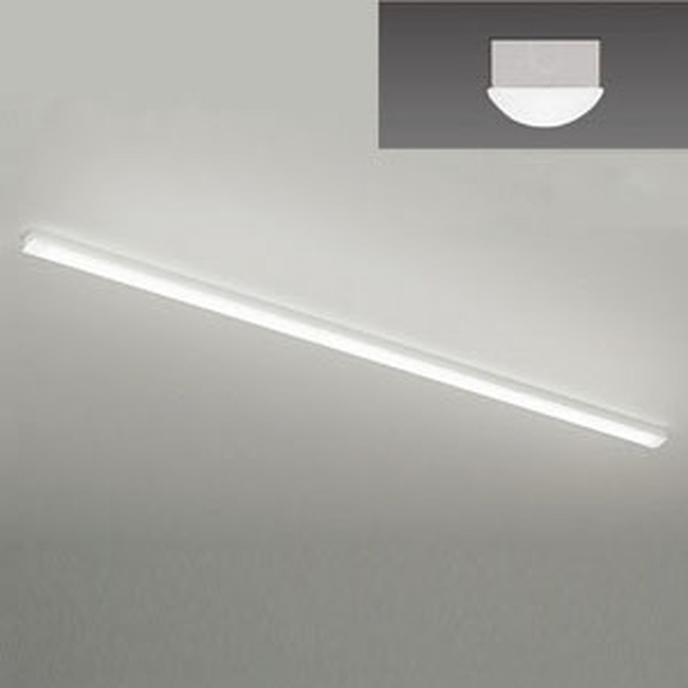遠藤照明 LEDベースライト 《LEDZ SDシリーズ》 110Wタイプ 直付タイプ トラフ形 一般タイプ 13500lmタイプ 非調光タイプ Hf86W×2灯用高出力型器具相当 昼白色 ERK9560W+RAD-761N