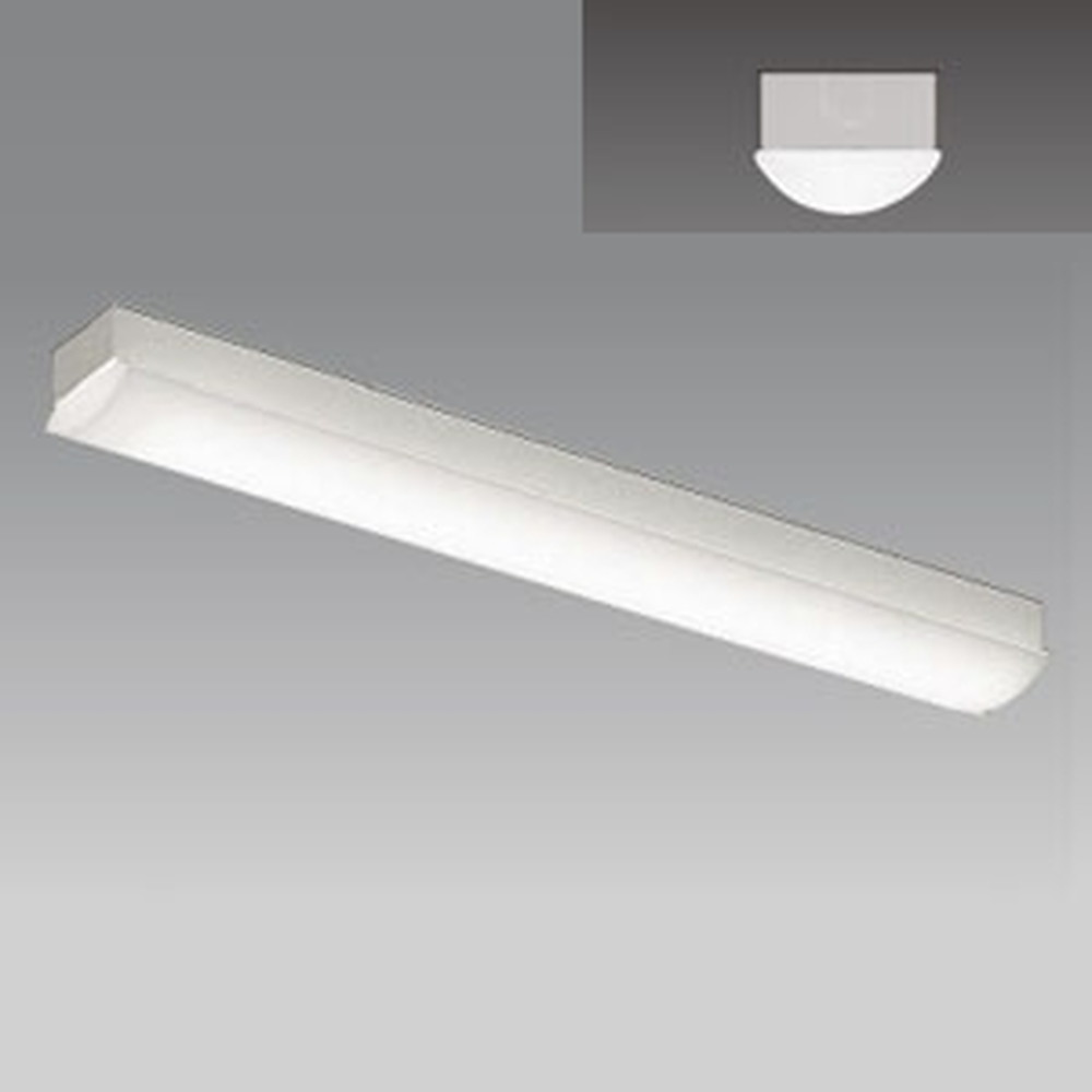 遠藤照明 LEDベースライト 《LEDZ SDシリーズ》 20Wタイプ 直付タイプ トラフ形 一般タイプ 3000lmタイプ 無線調光タイプ Hf16W×2灯用高出力型器具相当 昼白色 ERK9561W+RAD-774N