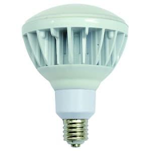 日動工業 高演色LED電球 ハイスペックエコビック40W バラストレス水銀灯300W相当 ワイドタイプ 昼白色 口金E39 L40V2-J110-50K