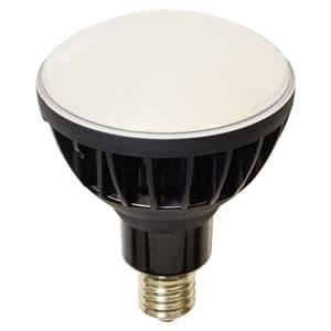 日動工業 高演色LED電球 ハイスペックエコビック50W バラストレス水銀灯500W相当 ワイドタイプ 昼白色 口金E39 黒色 L50V2-J110BK-50K