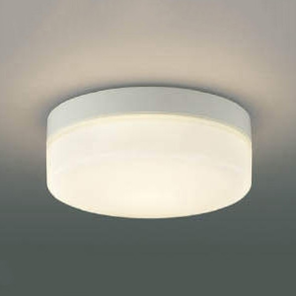 コイズミ照明 LED一体型階段通路誘導灯・非常灯 防雨型 直・壁取付用 FCL20W相当 電球色 AR49373L
