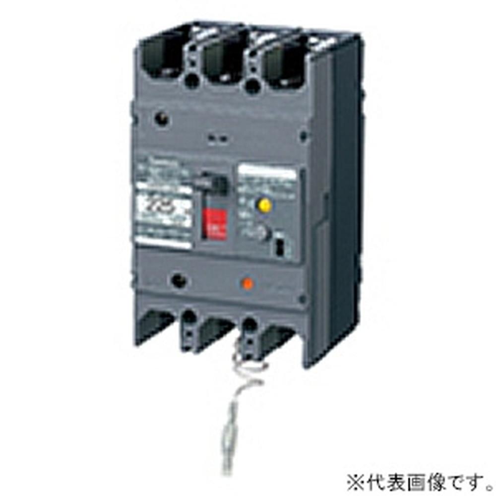 パナソニック 漏電ブレーカ BKW-225N型 3P2E 225A 100/200/500mA切替 単3中性線欠相保護付 盤用 BKW322595K