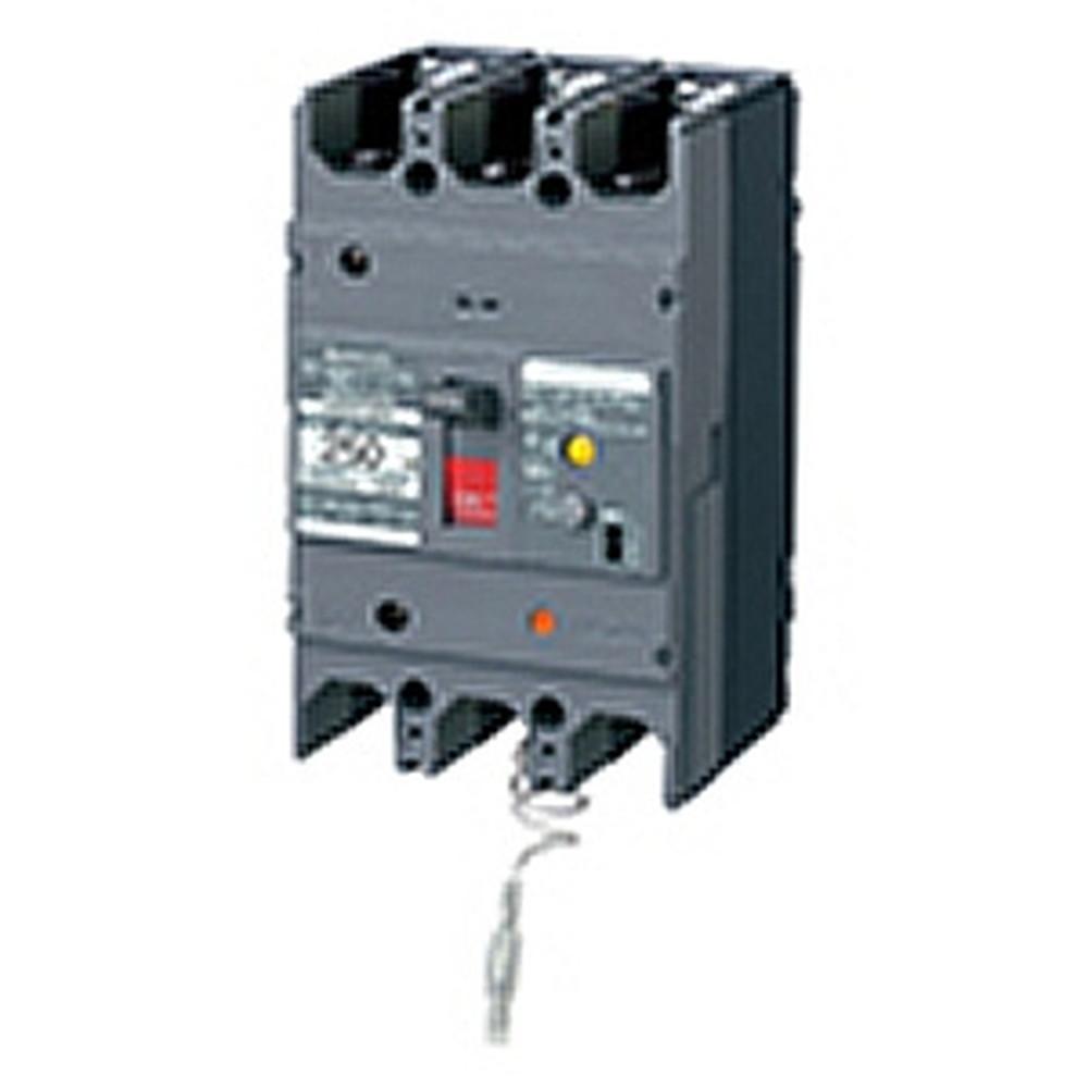 パナソニック 漏電ブレーカ BKW-250N型 3P2E 250A 100/200/500mA切替 単3中性線欠相保護付 盤用 BKW325095K