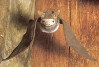 Kosen ケーセン ドイツ製 ぬいぐるみ こうもり(こげ茶)( ギフト プレゼント 誕生日 出産祝い 女の子 男の子 縫いぐるみ コウモリ 蝙蝠) 児童館