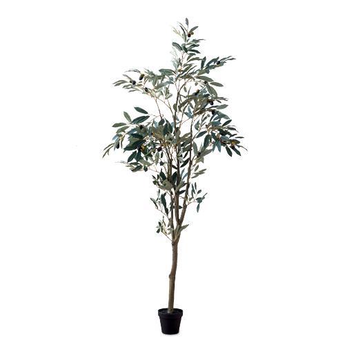 オリーブツリー PVC PE H152cm