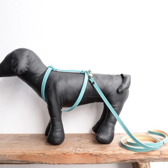 【BABA PARIS】 ババ パリ MADELEINE harness & leash エメラルドブルー ハーネス