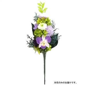 土橋美穂デザイン お供え用 プリザーブドフラワー アレンジメント 蘭 Mサイズ 花のみ