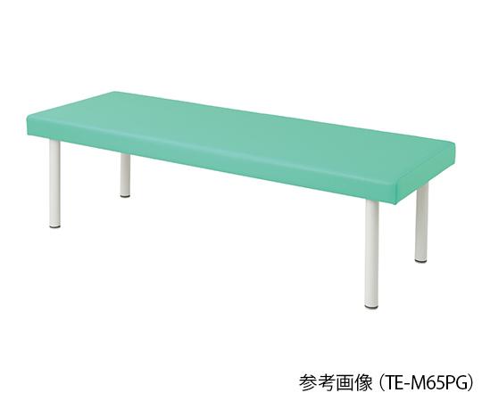 介護 医療用品 ベッド関連 高価値 カラフル診察台 ベッド高さ500mm 人気激安 ライトグリーン 4589638301995