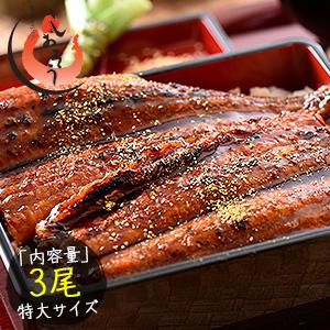 うなぎ 蒲焼き 国産 特大サイズ 200g×3尾 ウナギ 鰻[送料無料]