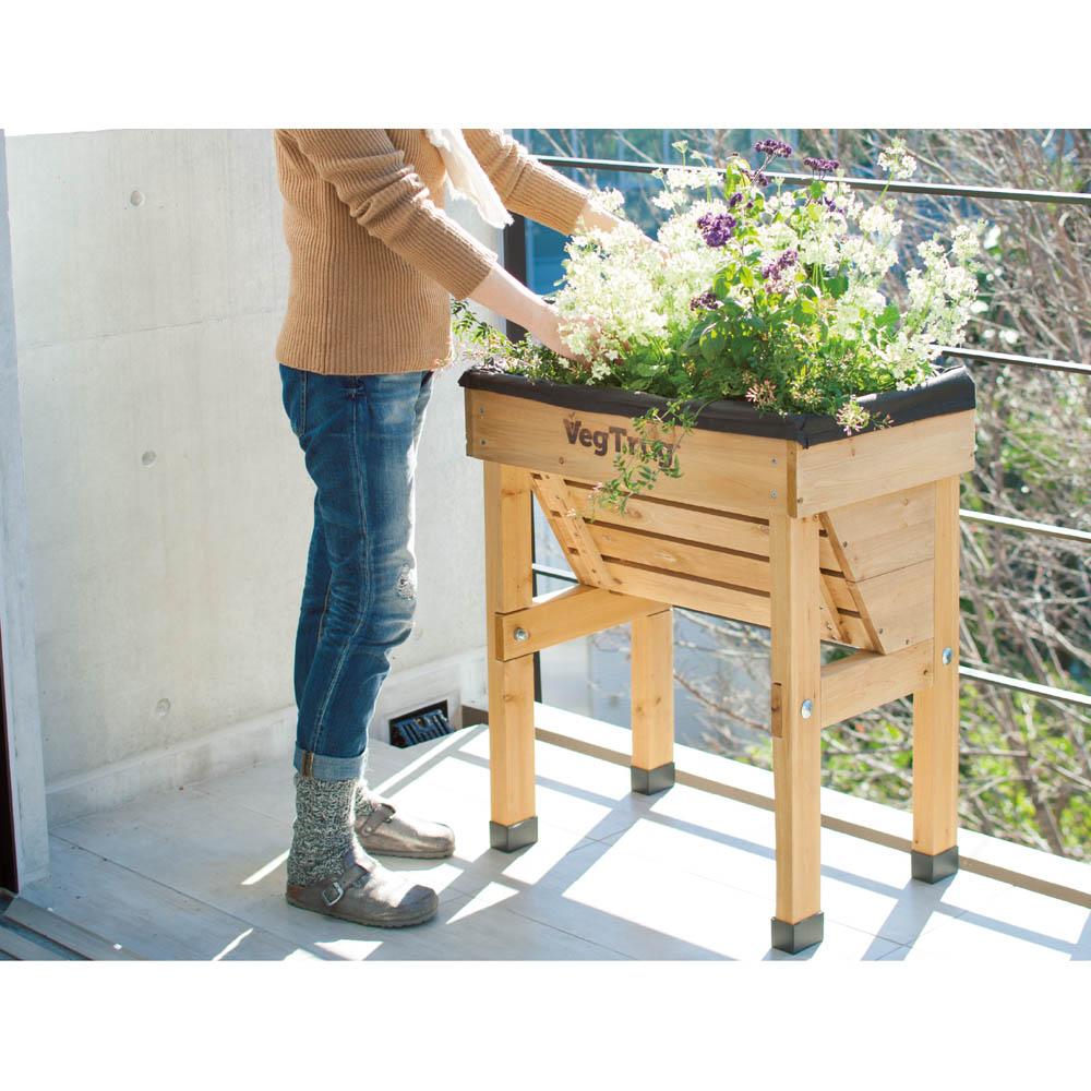 木製菜園プランター ベジトラグ コンパクトミニ G45251