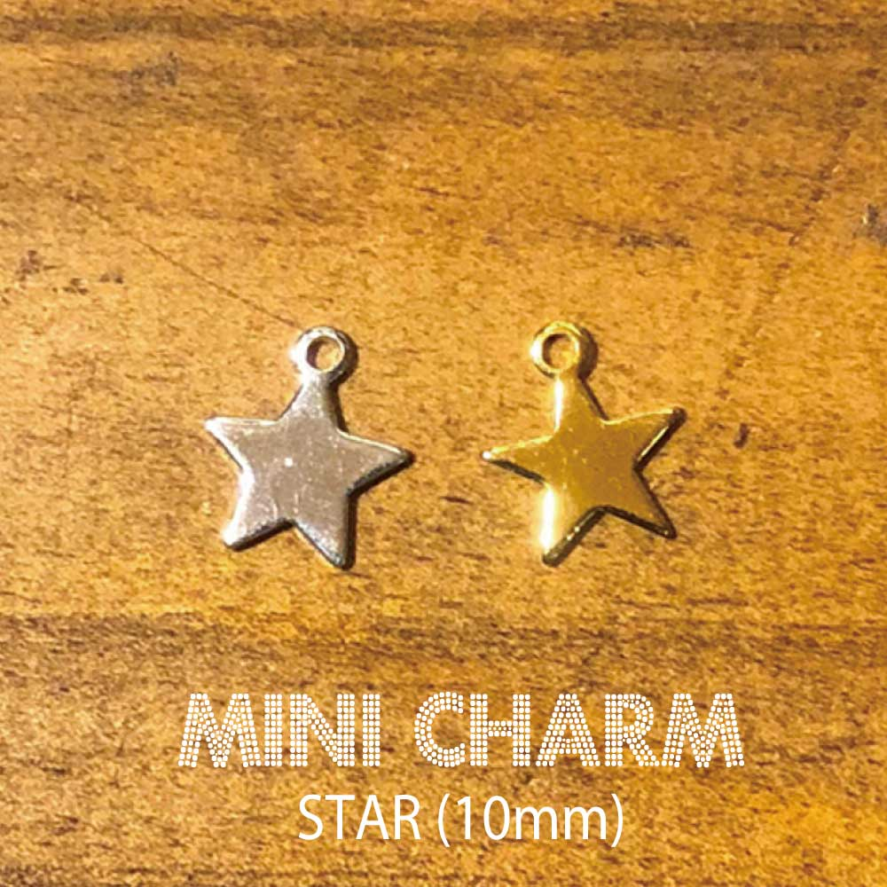 Miniチャーム STAR 10mm 公式通販 星型ミニチャーム シルバー スターチャーム 10mm星型 当店一番人気 ゴールド