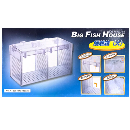 海水魚等の隔離に ロングベストセラー商品です チープ アズー 超人気 隔離箱 大 ビッグフィッシュハウス FISH HOUSE 水槽用 鑑賞魚用 BIG