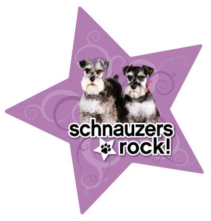 星型で我が家のスター犬をアピール パープルカラーのマグネット お買得 メール便5枚までOK DOG 大規模セール スターマグネット 犬グッズ 輸入雑貨 シュナウザー 犬雑貨