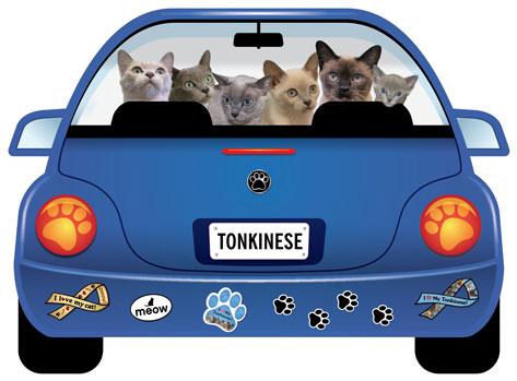 青のワーゲン形 Catブリードマグネット メール便5枚までOK 日本正規品 パップモービル カーマグネット 正規逆輸入品 トンキニーズ 猫グッズ 猫雑貨