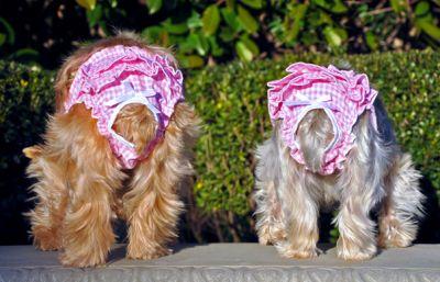 メール便選択OK お出かけ時に 犬用マナーパンツ DOGGIE DESIGN 配送員設置送料無料 ドギーデザイン Ruffled 高級な Pink Panties Gingham メール便対応 犬用パンツ-ギンガムチェック マナーパンツ