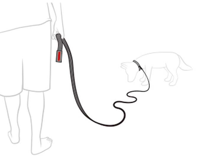 トラック&トレイン リード 引き紐 犬用 散歩 トレーニング 犬用リード 散歩リード イージードッグ ロングリード 【TC】