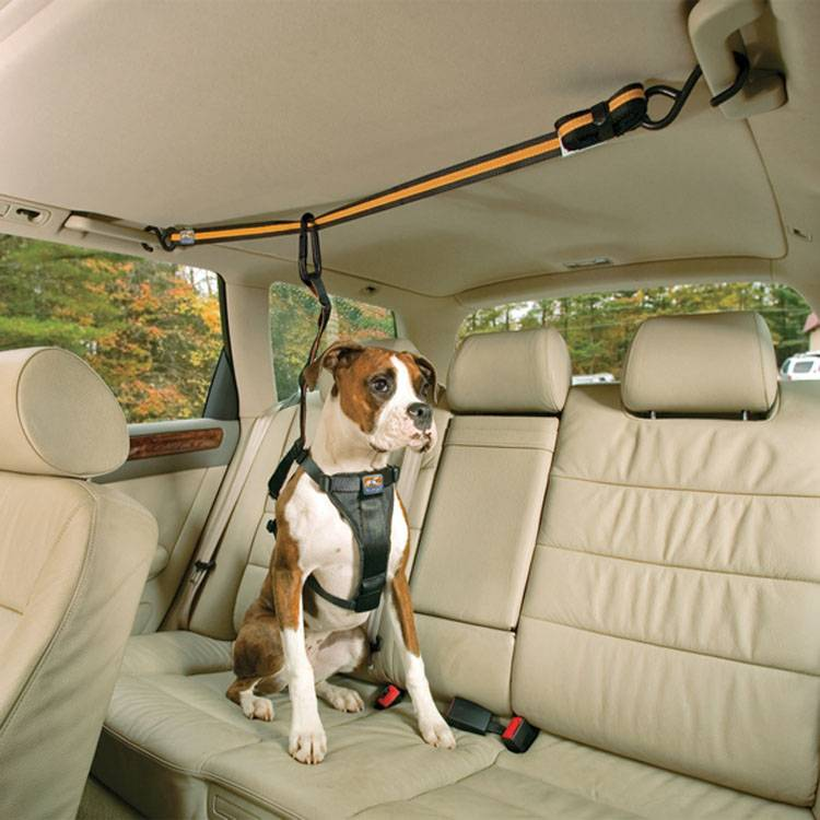 クルゴ オートジップライン 送料無料 ペット用品 ペット 車用 リード カー用品 犬 いぬ ルークラン 【TC】【B】