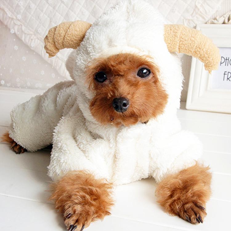 愛犬が可愛いコスプレに大変身 羊 ひつじ クリスマス ハロウィン コスプレ 高い素材 冬 ニット おすすめ特集 ふわふわ 動物 仮装 ダックス 服 送料無料 猫 ドッグウェア チワワ 犬服 犬 フリース トイプードル メール便