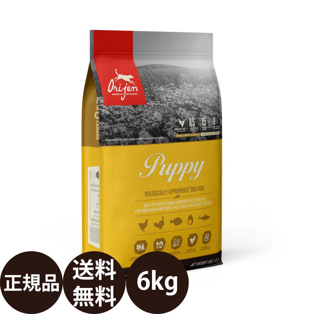 オリジンパピー 5.9kg