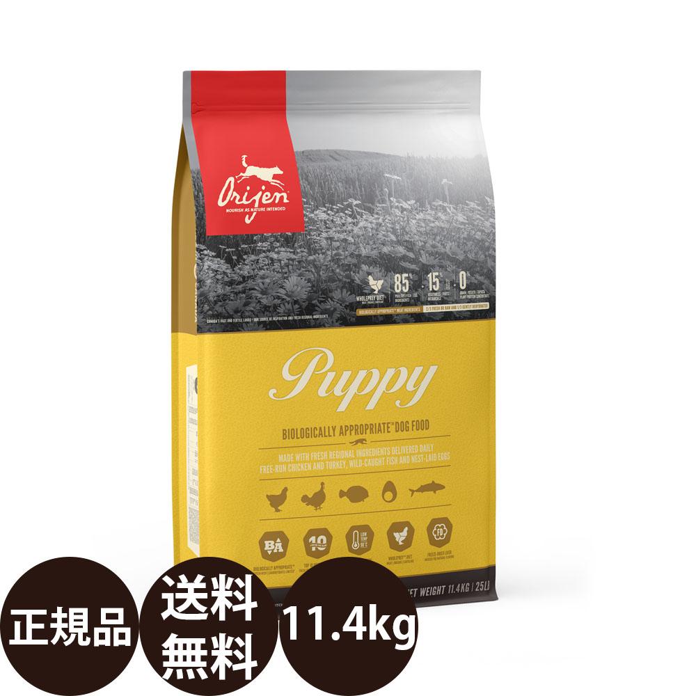 オリジンパピー 11.3kg